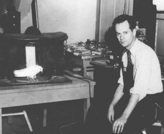Photograph of B.F. Skinner and a caged pigeon